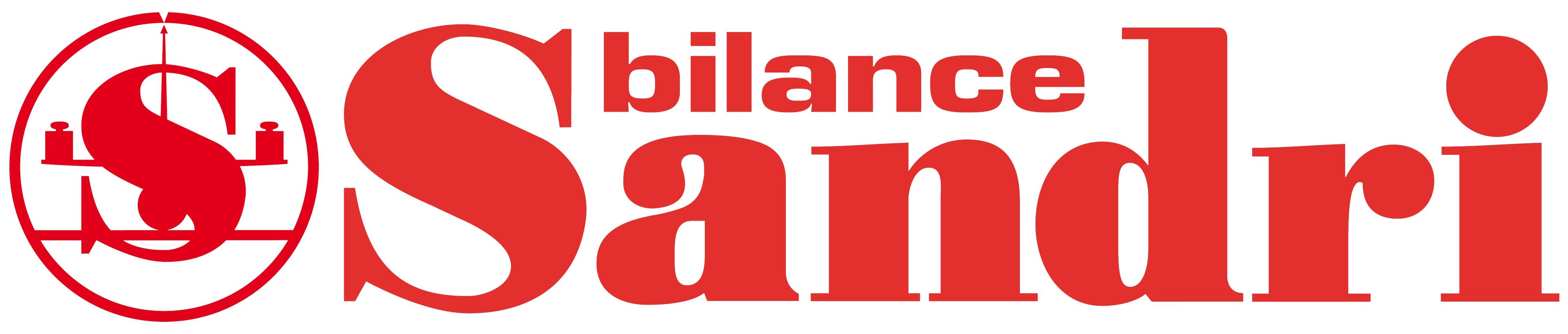 logo_sandri bilance srl: pese a ponte
