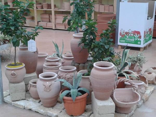 Pagine web italia aziende fiori e piante vendita al for Arredo giardino padova
