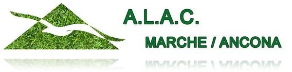 logo_a.l.a.c. marche