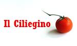 logo_il ciliegino sas & c.