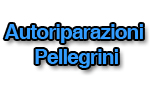 logo_autoriparazioni pellegrini