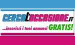 logo_pitstoteam